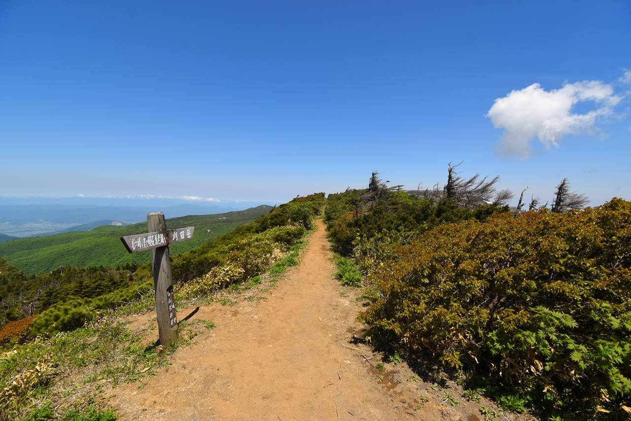 杉ヶ峰から刈田岳への稜線ハイク