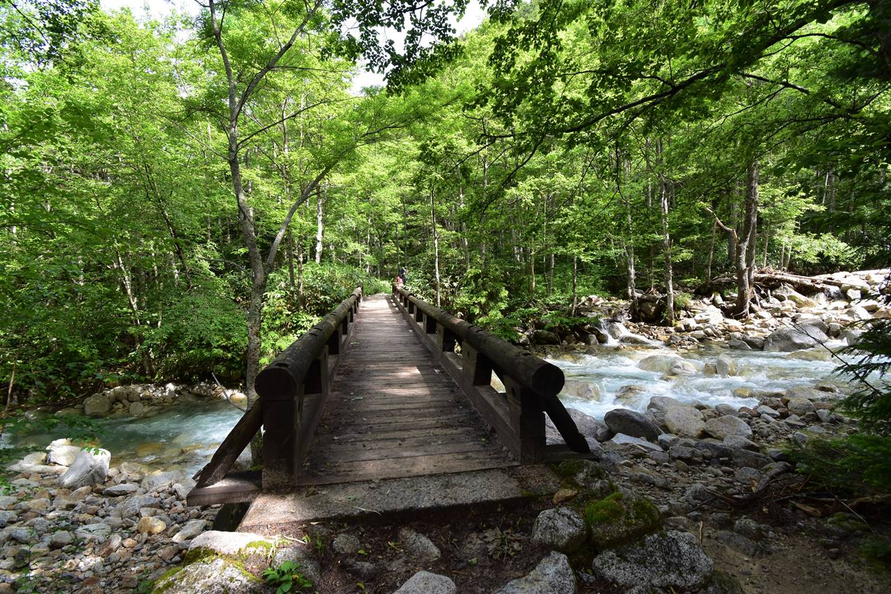 槍沢ルート 一ノ俣の橋