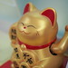 Maneki Neko (Lucky Cats or Fortune Cats) at the seafood restaurants