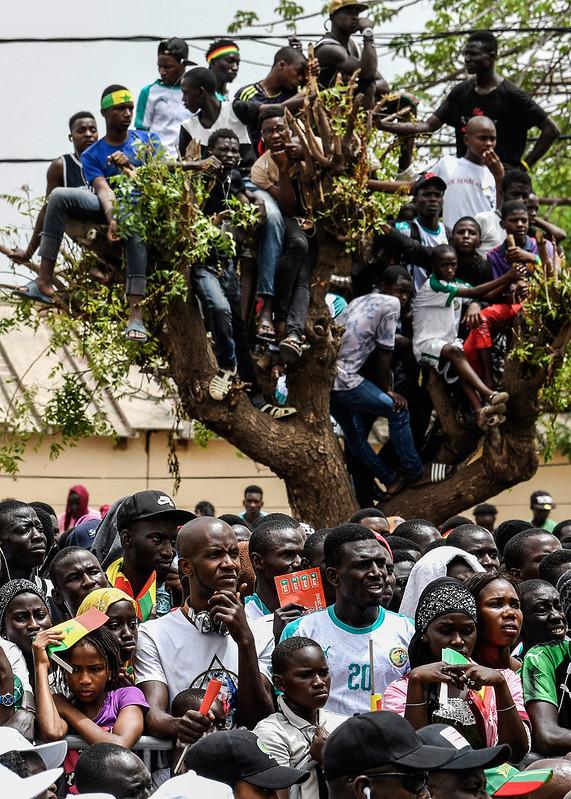 球迷為了看清螢幕甚至爬到樹上。(AFP授權)
