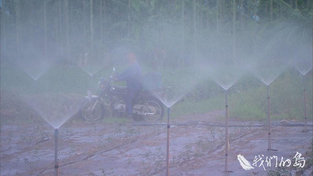 964-2-10s泰山村在群山與平原的交界,居民從早期就開始取用地下水,出產的泉水更是名聞全台。
