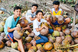 Cebu, Philippines farmland now harvesting nearly one ton of coconuts quarterly; after-school care program helping students stay successfully enrolled in school | by Peace Gospel