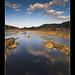Contrastes en el rio Tinto II