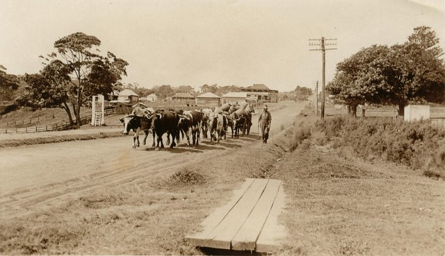 Princes Highway Ulladulla, 1920s