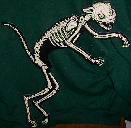 1960s halloween decorations - Beistle Skeleton Cat Quot Vintage Halloween Quot Scary Loo Flickr