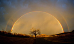 Almost Over The Rainbow | by LifeHouseDesign