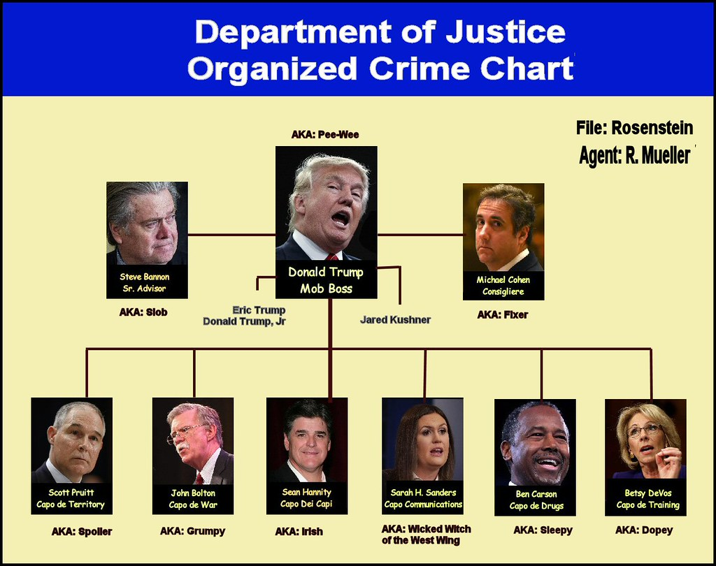 Image result for trump crime  chart