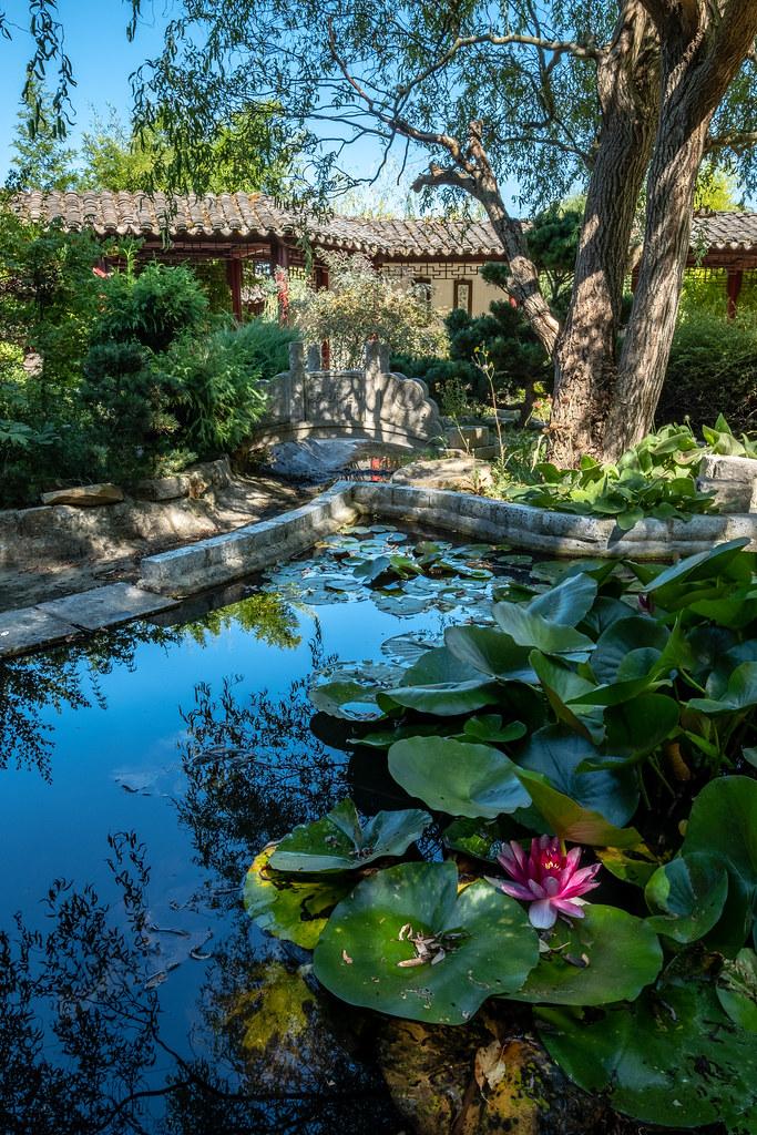 Quietude Facebook Instagram Le Jardin Yili Est Un Jardin Flickr