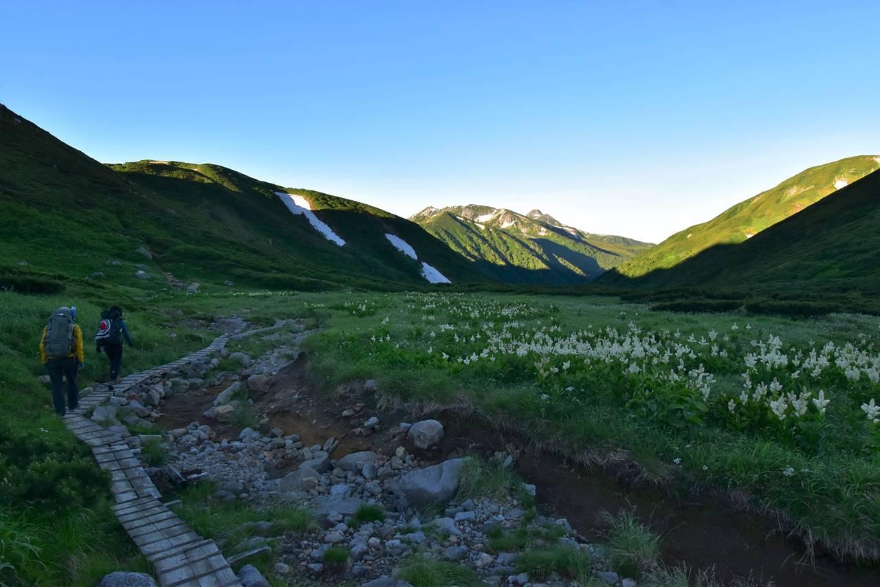 双六岳の木道路