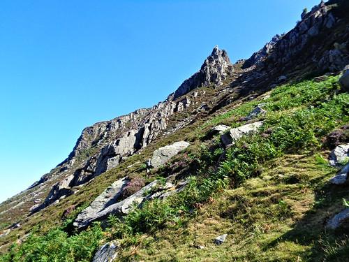 Looking up towards Pinnacle Ridge