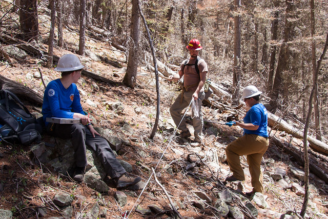 A Forest Service employee and Rocky Mountain Youth Camp volunteers taking forest stand and impact data
