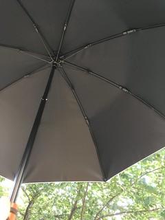 日傘の効果