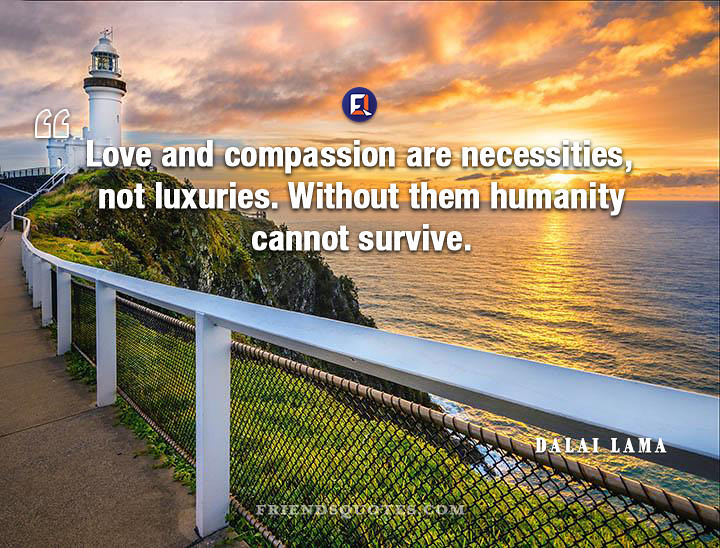 Dalai Lama Quote Love Compassion Necessities Luxuries Flickr