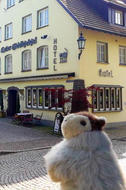 Reise-Murmeltier Karla Kunstwadl unterwegs in Bad Säckingen ... Scheffel, Trompeter, Holzbrücke, Fridolinsmünster, Bergsee, Gallusturm, Rhein ... Fotos: V&J