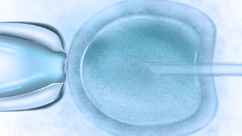 The technique can edit DNA at the point of fertilisation, speeding up the process of genetic research