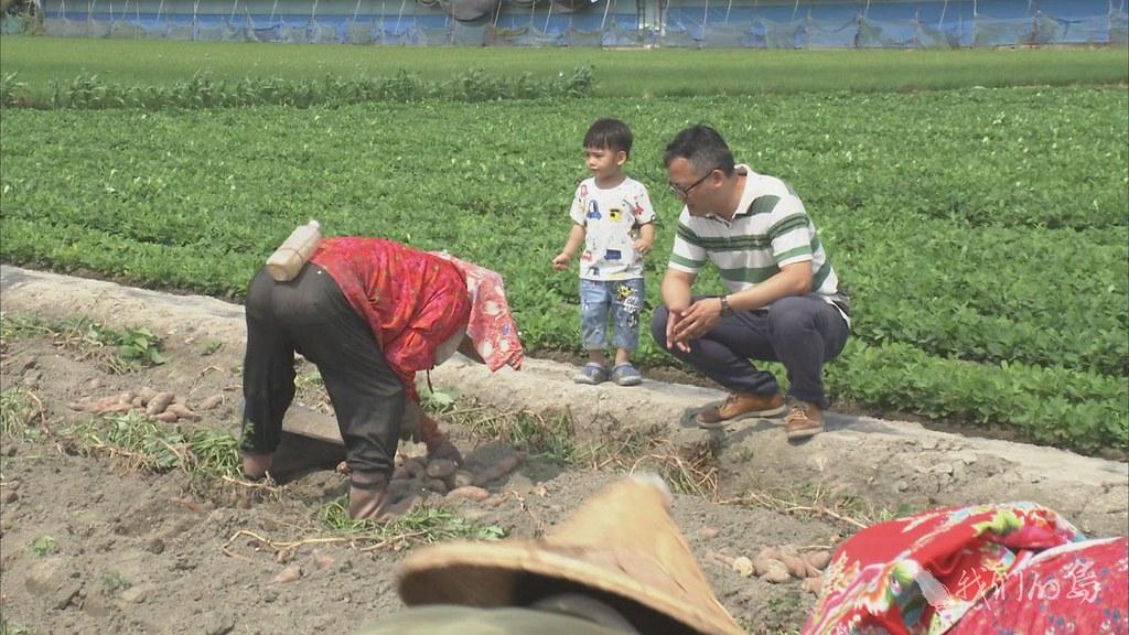 955-3-1 (60)雲林是地瓜生產大縣,地瓜食品業者,希望透過食品加工技術,提升地瓜的食用價值。