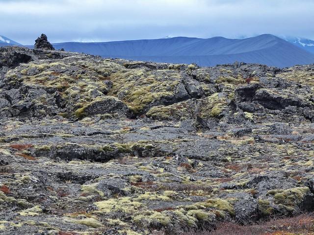 Campos de lava en Myvatn (Norte de Islandia)