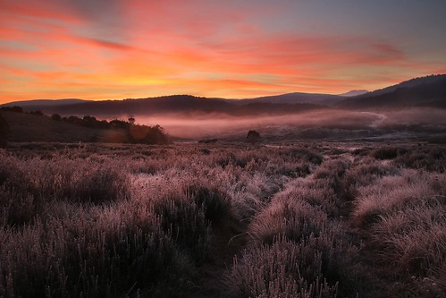 morning light at wheelers hut | by Murray Valley Bushwalkers