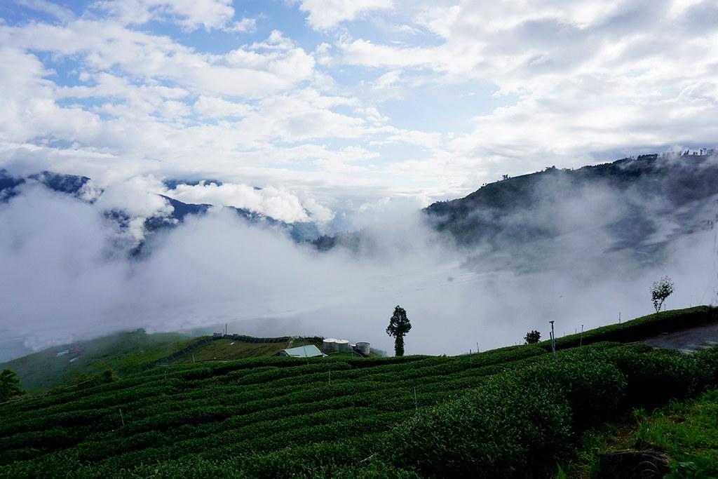 雲霧袅繞,黑夜與白晝的溫差