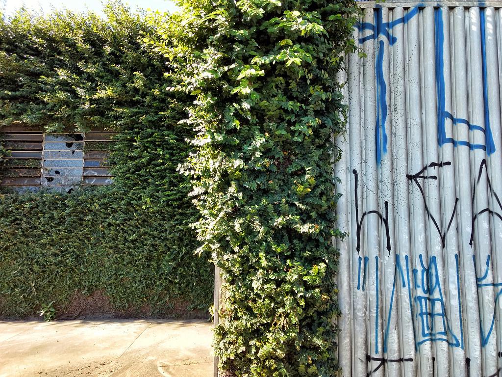 Stop Paint Peeling Off Kitchen Walls