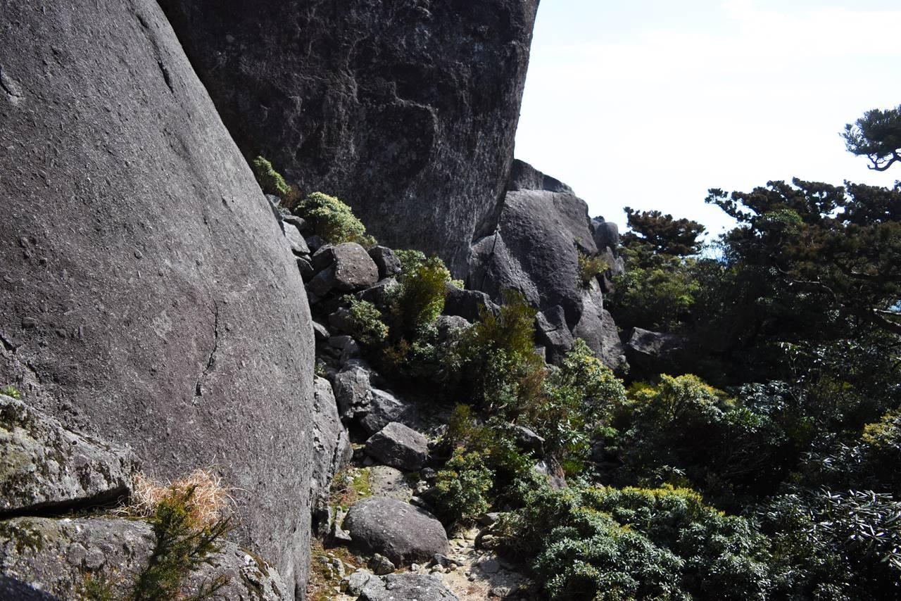 太忠岳山頂直下の岩場