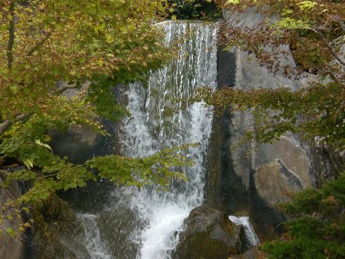 Jardin japonais monaco bertrand duperrin flickr for Jardin japonais monaco