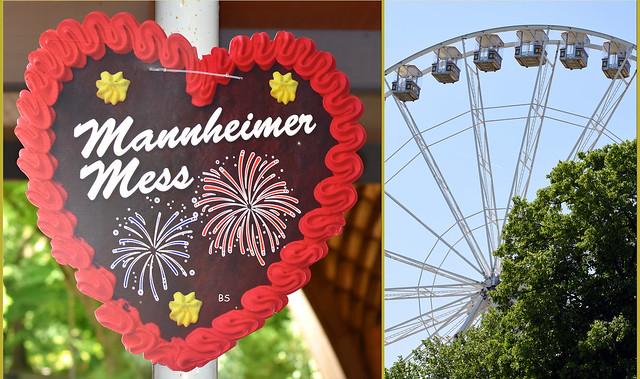 Mai 2018 - Mannheim Herzogenriedpark - Blumen, Bauerngarten, See ... Foto: Brigitte Stolle - Mannheimer Mess