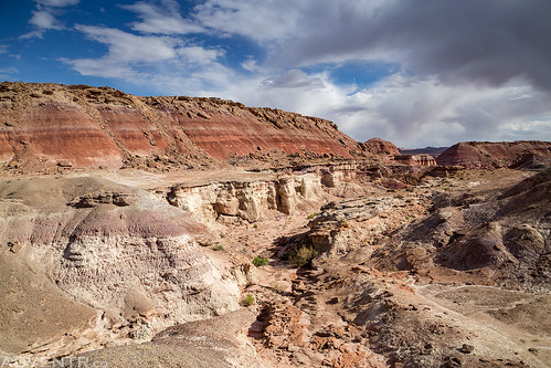 Hanksville - Burpee Dinosaur Quarry | by IntrepidXJ
