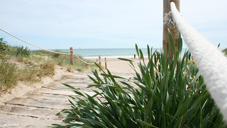 camino a la playa del saler