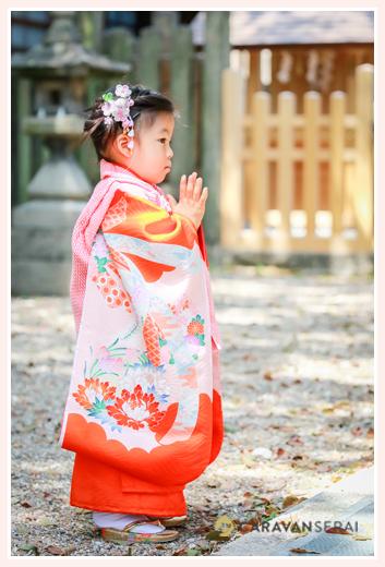 数え3歳の女の子の七五三写真 神社で祈る姿