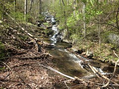 Lance Creek Falls