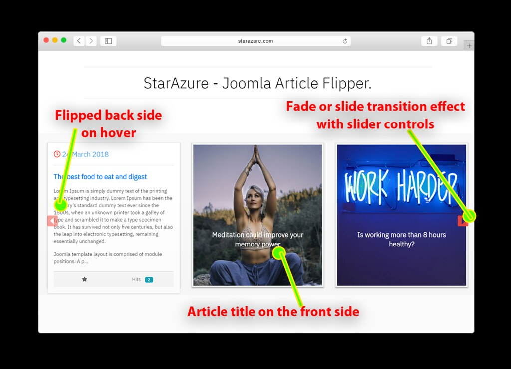 Article flipper