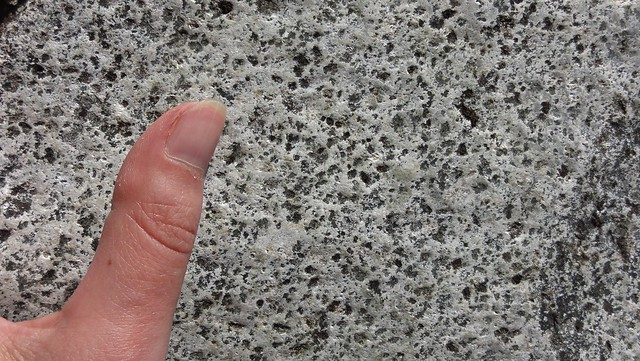 Image shows a pale gray rock pocked with tiny holes where darker, softer mineral grains used to be. Thumb for scale.