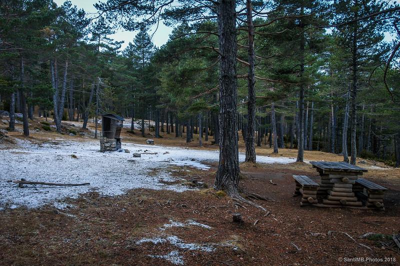 Zona de pic-nic del Bosc de Palomera