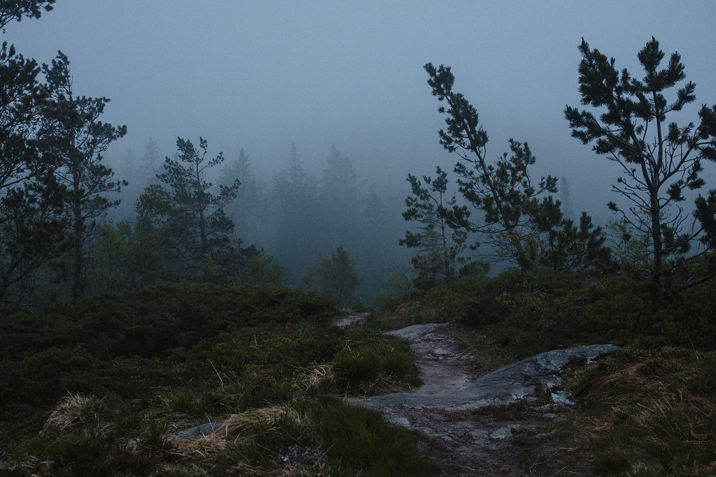 Hiking trail in a foggy landscape. Low visibility.