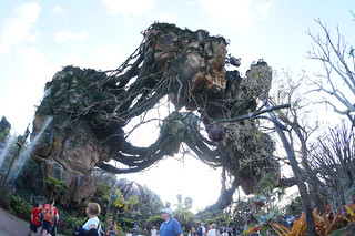 Animal Kingdom: Pandora | by brownpau
