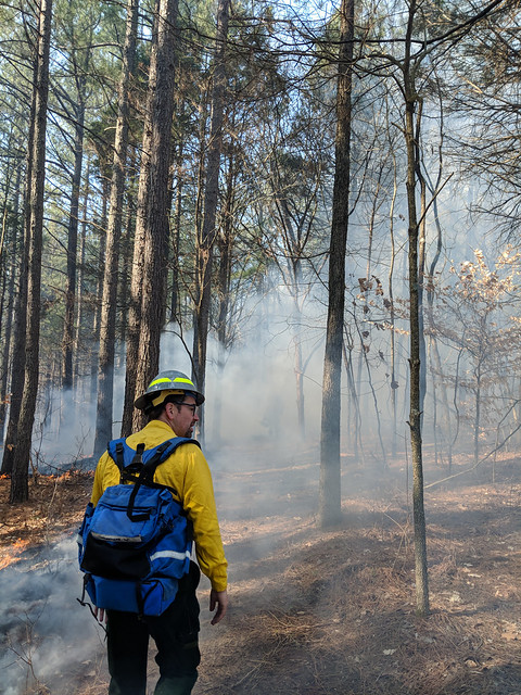 ARA Trent Wickman observing smoke dispersion on a prescribed fire