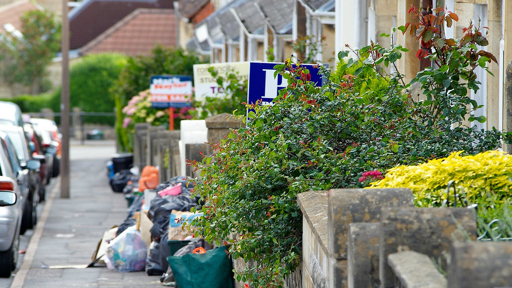 Research shows reduced bin collection increases rates of recycling