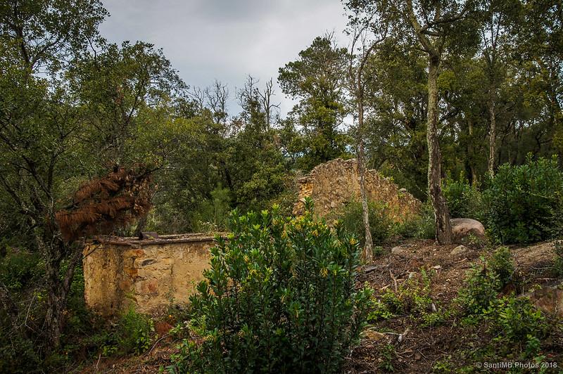 Ruinas en la Serra de Can Pelló