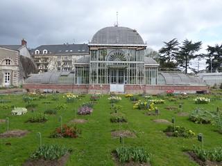 Nantes, Loire-Atlantique: Jardin des Plantes, Palmarium, c ...