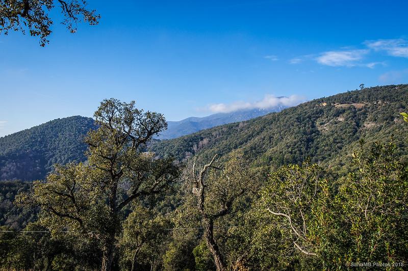 El Turó de Morou desde el camino al Castell de Montsoriu