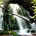 Upper Mingo Falls