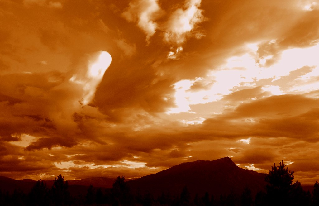painting the sky  sepia