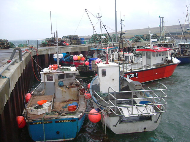Orkney inshore creel boats at Tingwall. | As you can see in … | Flickr