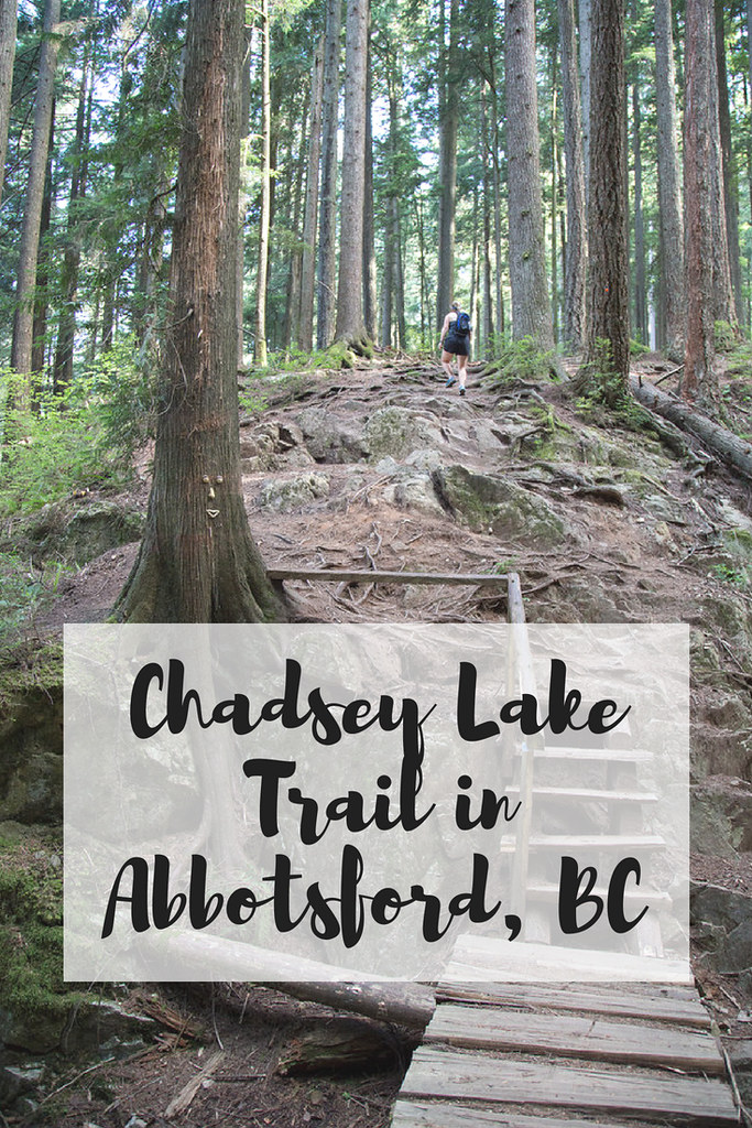 Chadsey Lake (also known as Lost Lake) trail in Abbotsford BC