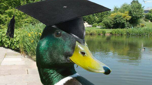 Celebrate graduation day with a selfie and share on Twitter at #BathGradSelfie.