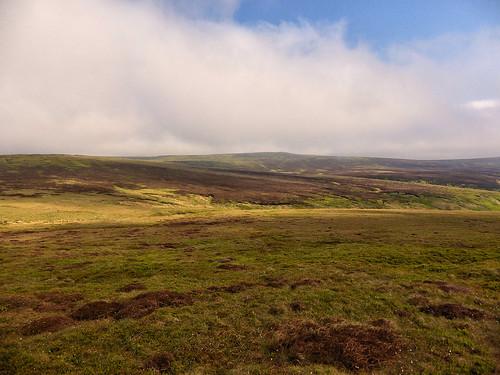 Westend Moor, looking towards Grinah Stones