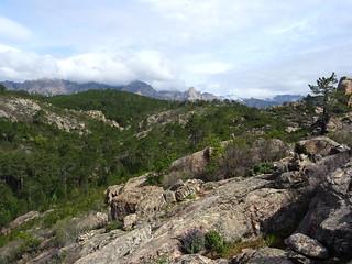 Sur le sentier de la crête de Punta Piana (PR6) : crête Quercitedda-Buvona-Bunifazinca