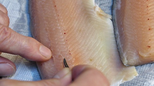 filleting | by © mpg