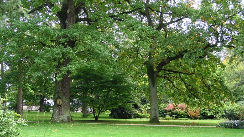 Französischer Garten Celle O W Flickr